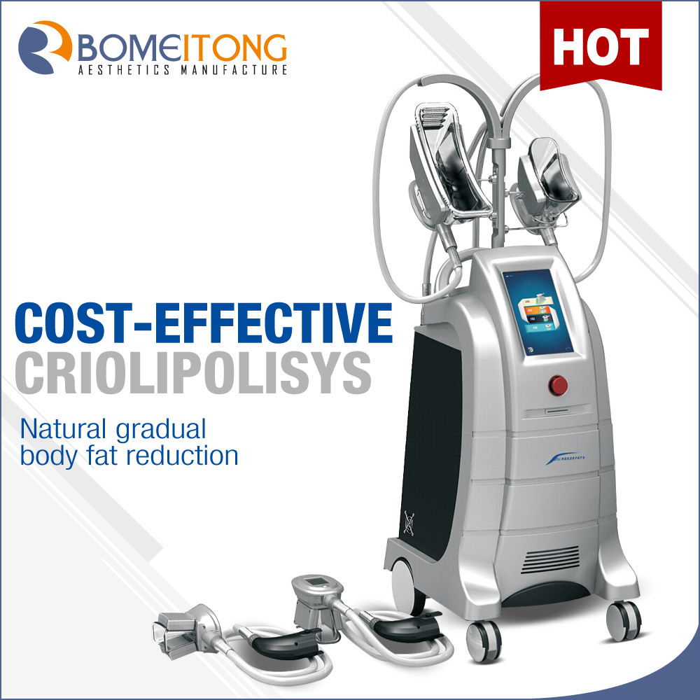 Professional Cryolipolysis Fat Reducing Machine Price
