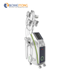 Cryolipolysis Freeze Fat Slim Beauty Machine for Sale
